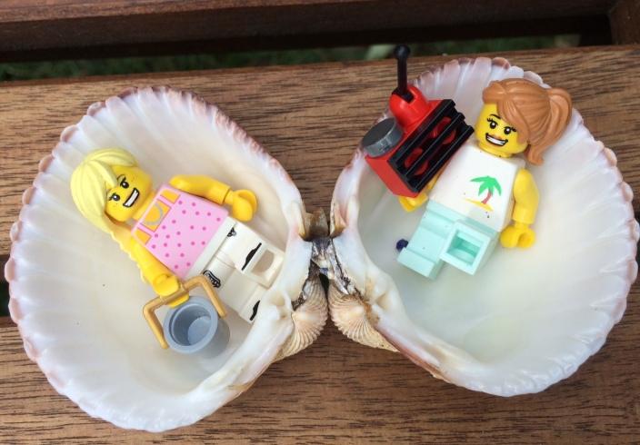notthosemums_shells